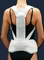 Picture of SpinalLite - SpineUp Support aka Back Support, Lumbar Support, Bell Horn Back Brace, SPECIAL ORDER ITEM